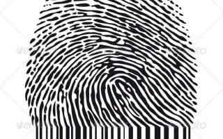 Fingerabdruck mit Barcode #GraphicRiver Persönliche Identität, Fingerabdruck mit Barcode, Vektor AI EPS 8 und hochauflösendes JPG 350 ...