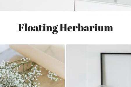 DIY: Floating Frame Herbarium - so bastelt ihr den schwebenden Rahmen! - #bastel ...
