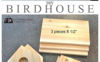 34 DIY Vogelhäuser