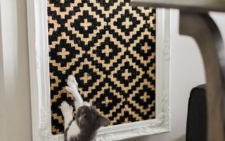 Wenn Sie diese DIY Katzenspielzeug herstellen, werden Sie Ihre zur glücklichsten Katze auf dem Planeten machen