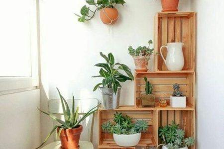 16 Ideen für Innengärten, die Sie lieben werden - HomelySmart - Hom ... - 16 Ideen für Innengärten, die Sie lieben werden - HomelySmart - HomelySmart | 16 ...