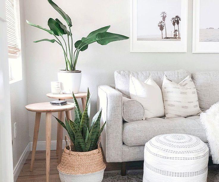 Coastal Home Decor mit gefälschten Zimmerpflanzen von Afloral - #zimmerpflanzen #zimmer ...