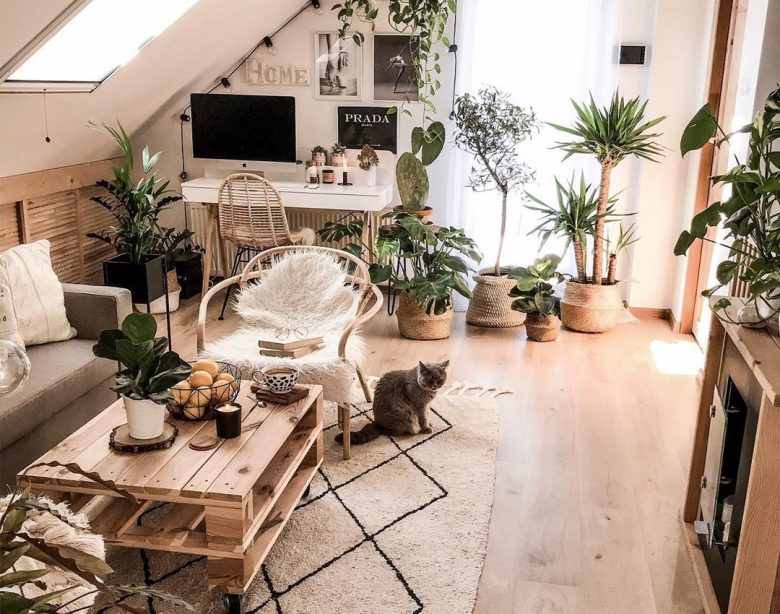 10 Möglichkeiten, Ihr Haus mit geringem Budget neu zu dekorieren | Dekoholisch