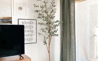 """""""Decorating My First Apartment"""": Eine Lektion in budgetfreundlichen Klassikern und Momente schaffen"""