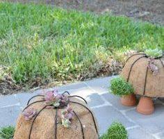 Wie man ein DIY Turtle Topiary macht - Modernes Design #Design #DIY #diy Gartendekor… - DIY Garten - DIY Garten - DIY Gartendekor Dollar Läden