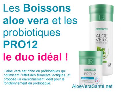 PRO12 Boostez Votre Immunité mit 12 Bactéries Probiotique