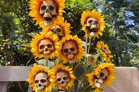 Diese DIY Sonnenblumen-Skelette schreien Halloween, und ich möchte einen ganzen Garten voll von ihnen