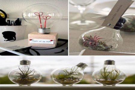 DIY Glühbirnen Terrarien | Klicken Sie auf Bild für 30 DIY Home Decor Ideen mit kleinem Budget | D ...