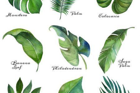 Kunst imprimable gratuit de feuilles tropicales {série de 9} | Der glückliche Housie