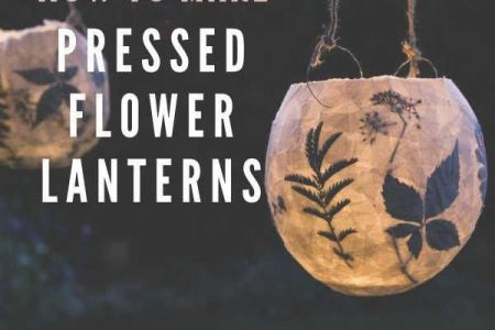 Wie man schöne gepresste Blumenlaternen macht - Easy DIY