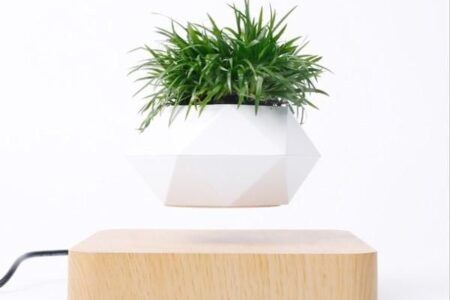 Schwebender Bonsai-Topf - Basis aus hellem Holz